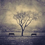 The Winter And The Benches Art Print