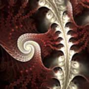 The Wonders Of Nature Vi Art Print