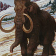 The Woolly Mammoth Is A Close Relative Art Print by Charles R. Knight