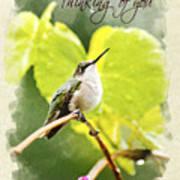 Thinking Of You Hummingbird In The Rain Greeting Card Art Print