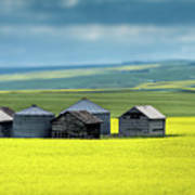This Is Alberta No.15 - Prairie Barns Art Print