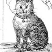 This Is My Book, Miau-u-u, 1859 Art Print