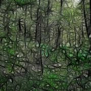 Thoreau Woods Fractal Art Print by Lawrence Christopher