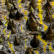 Thorns Of Silk Art Print