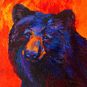 Thoughtful - Black Bear Art Print