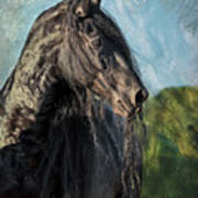 Thoughts Of Friesians Art Print