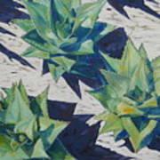 Three Aloe Art Print