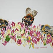 Three Beez Art Print