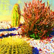 Three Cacti Art Print