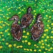 Three Ducklings Art Print