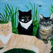 Three Furry Friends Art Print