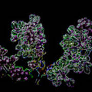 Three Neon Lilacs Art Print