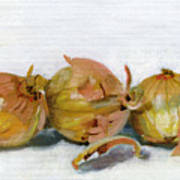 Three Onions Art Print by Sarah Lynch