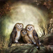 Three Owl Moon Art Print by Carol Cavalaris
