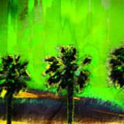 Three Palms IIi Art Print