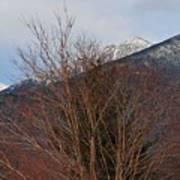 Three Peaks In Winter Art Print