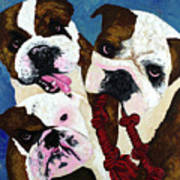 Three Playful Bullies Art Print