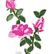 Three Roses In The Garden Art Print