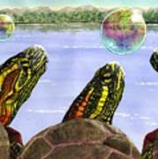 Three Turtles Three Bubbles Art Print