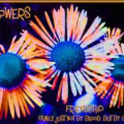 Three Wild Flowers Friendship Art Print