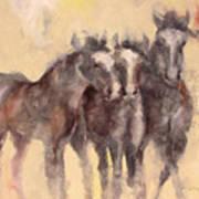 Through A Horses Ears Art Print