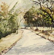 Through Mudumalai Forests Art Print