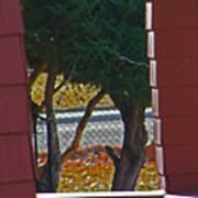 Through My Neighbors Porch Art Print