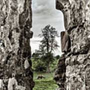 Through The Castle Window Art Print
