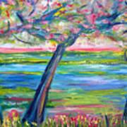 Tidal Marsh View Art Print