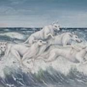 Tidal Race Art Print