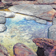 Tide Pool Art Print