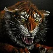 Tiger-1 Original Oil Painting Art Print
