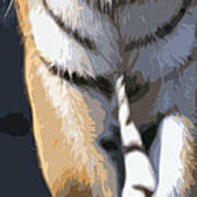 Tiger 16 Pano Art Print