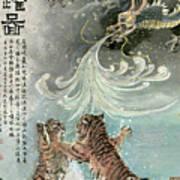 Tiger - 27 Art Print