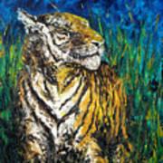 Tiger Night Hunt Art Print