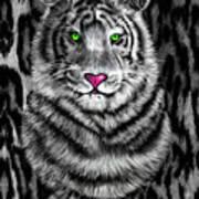 Tigerflouge Art Print