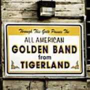 Tigerland Band Art Print