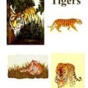 Tigers Montage Art Print