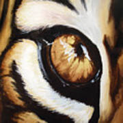 Tiger's Eye Art Print by Lane Owen