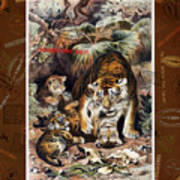 Tigers For Responsible Tourism Art Print