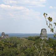 Tikal IIi Art Print