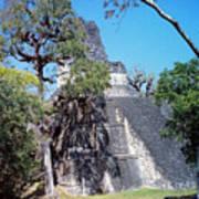Tikal Iv Art Print