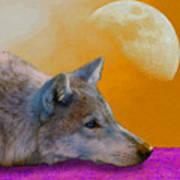 Timber Wolf Under The Moon Art Print by Tina B Hamilton