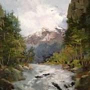 Timberlands Art Print