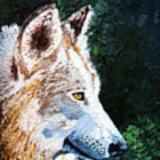 Timberwolf Art Print