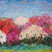 Time Of Rhododendron Art Print
