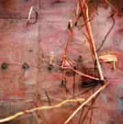 Tin Door - Red Pond Art Print