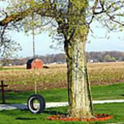 Tree Tire Swing  Art Print