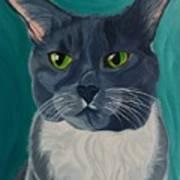 Titter, Cat Portrait Art Print