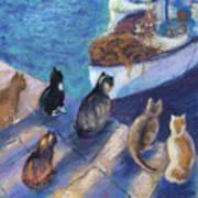 Today's Catch Art Print by Helen Hammerman